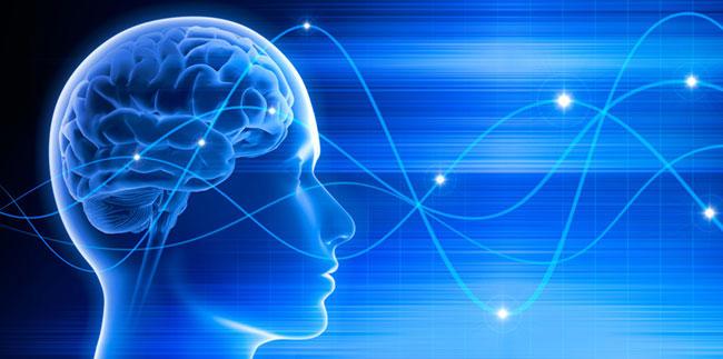 Neurofeedback: Computergestützte Trainingsmethode
